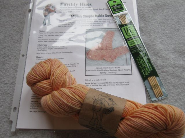 Earthly Hues hand-dyed Sock Kit